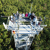 a group of people standing on a structure above the tree canopy