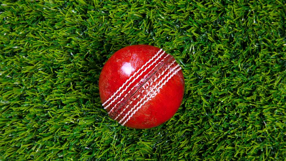 Pictured is a cricket ball.