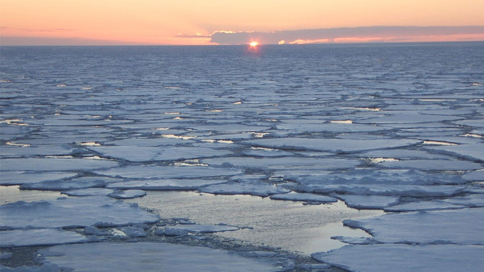 The Weddell Sea. Image courtesy of the Weddell Sea Expedition.