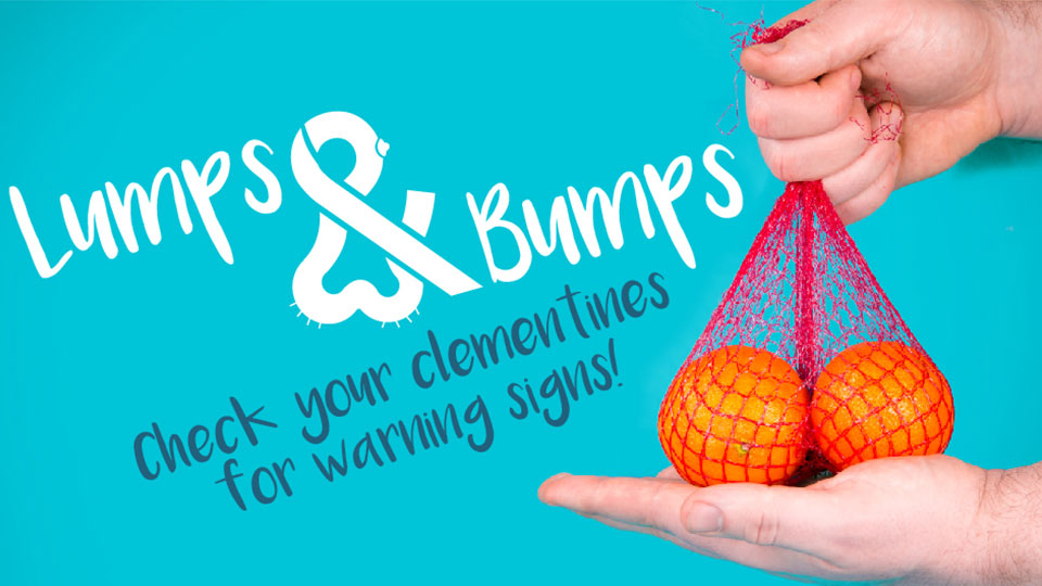 Pictured is the lumps and bumps logo and a sack of oranges.