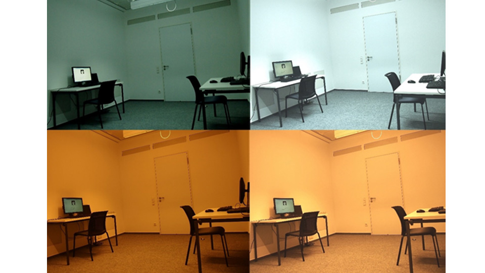 Different lighting conditions used in the laboratory study.