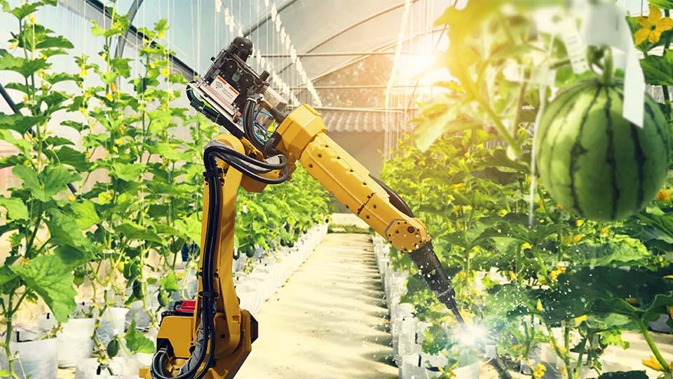 A robot spraying crops.