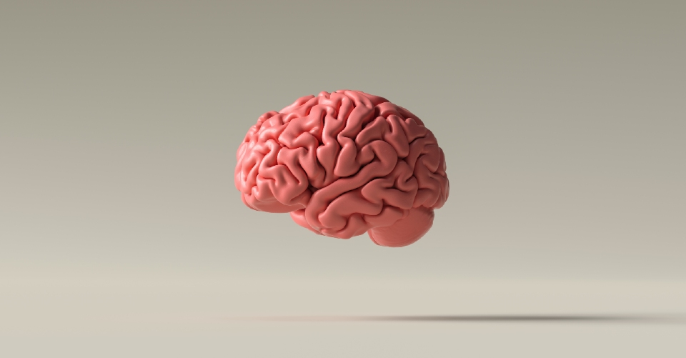 Floating brain image
