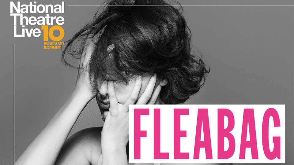 Poster promoting Fleabag - Phoebe Waller-Bridge