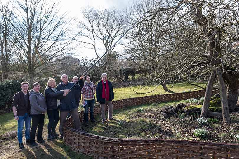 Pictured Loughborough University and National Trust staff cutting Newton's Tree.