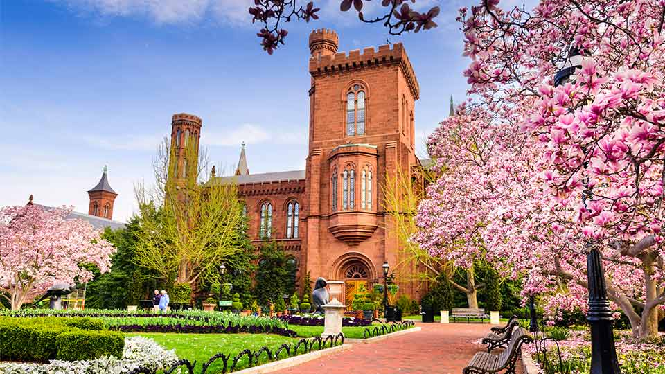 Pictured are the gardens at The Smithsonian Institution Building during the spring season. It is situated in the National Mall in Washington DC, which is home to 11 of the Smithsonian's museums and galleries.