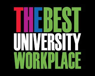 THE Workplace survey logo