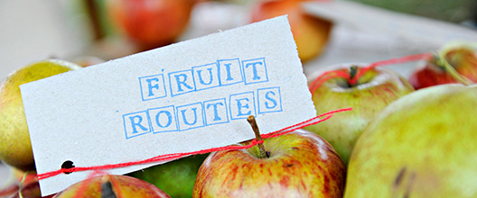 Fruit Routes