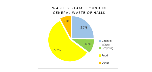 pie chart showing the breakdown of the different types of things found in the general waste stream in halls