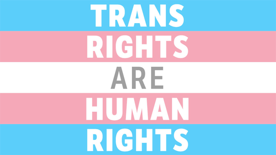 logo for Trans Rights are Human Rights campaign - with pink, blue and white stripes